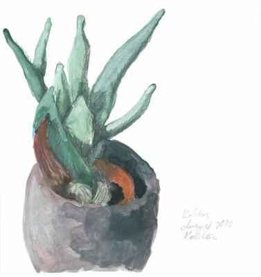 Kaktus - 15x15cm - aquarell