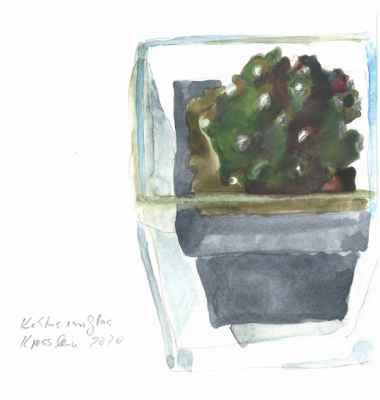 Kaktus im Glas   15x15cm   aquarell