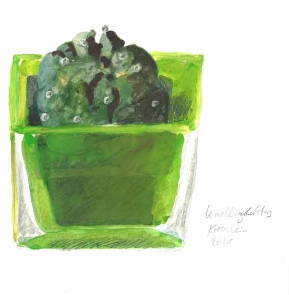 knolliger kaktus   15x15cm   aquarell