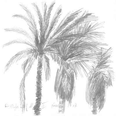 Ein Winter auf Mallorca III 15x15cm bleistiftzeichnungen