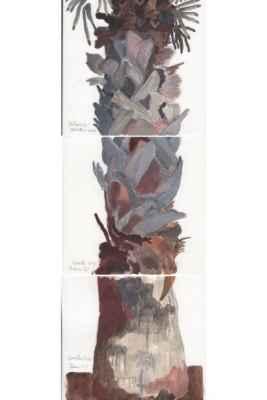 Palme a b c 15x15cm mischtechnik auf papier