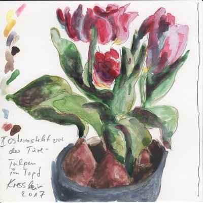 tulpen im topf 15x15cm aquarell
