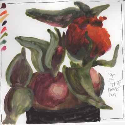 tulpen im topf VII 15x15cm aquarell