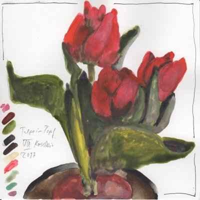 tulpen im topf VIII 15x15cm aquarell
