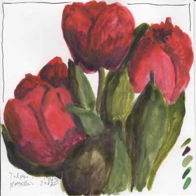 tulpen im topf X 15x15cm aquarell