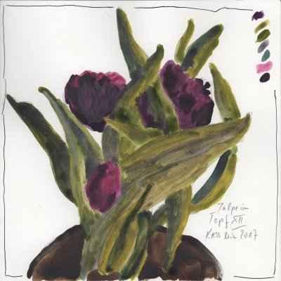 tulpen im topf XII 15x15cm aquarell