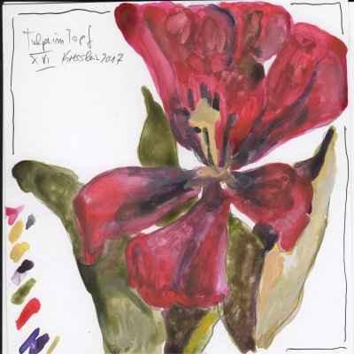 tulpen im topf XV 15x15cm aquarell