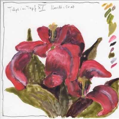 tulpen im topf XVI 15x15cm aquarell